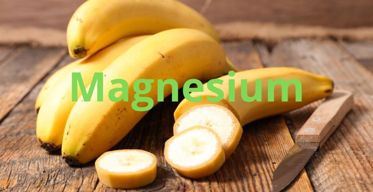 hundefutter barf bananen magnesium